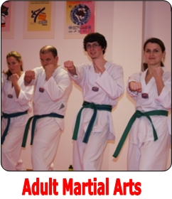 Adult Martial Arts Program at Choe's TKD Milford, MA