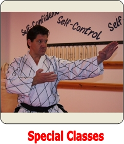 Special Martial Arts Program at Choe's TKD Milford, MA
